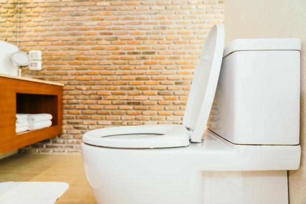 Inodoro moderno - historia de los inodoros